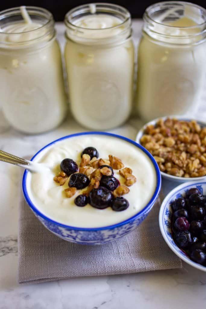 21 Instant Pot Greek Yogurt