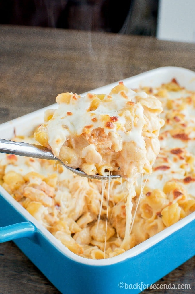 4 Bufalo Chicken Alfredo Bake