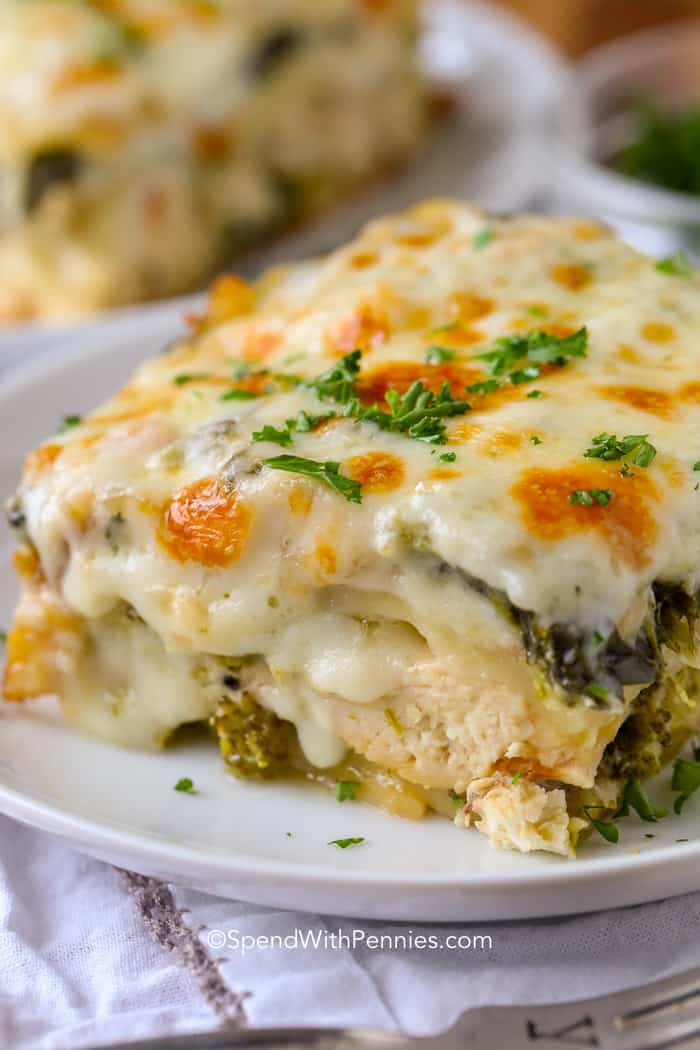 8 Broccoli Chicken Lasagna